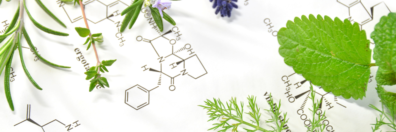 化学工業薬品・食品添加物の総合商社|川内化成株式会社